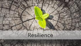 Blog-Image-Resilience-700x400-1